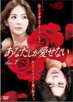 あなたしか愛せない DVD-BOX 1の評価・レビュー(感想)・ネタバレ