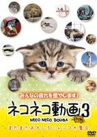 ネコネコ動画 3 ~またまたおもしろニャンコ大集合~の評価・レビュー(感想)・ネタバレ