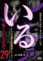 「いる。」怖すぎる心霊投稿映像13本 Vol.29の評価・レビュー(感想)・ネタバレ