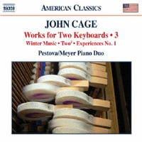 ジョン・ケージ:2種の鍵盤楽器のための作品集 第3集の評価・レビュー(感想)・ネタバレ